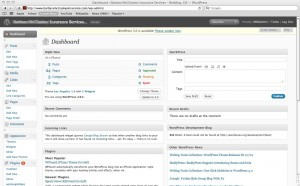 Screenshot of the WordPress Dashboard dialog where you can manage your WP site.